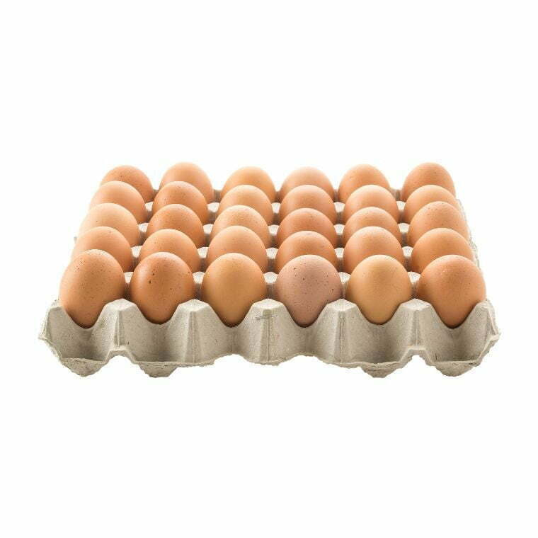 Fresh Chicken Eggs Grade B