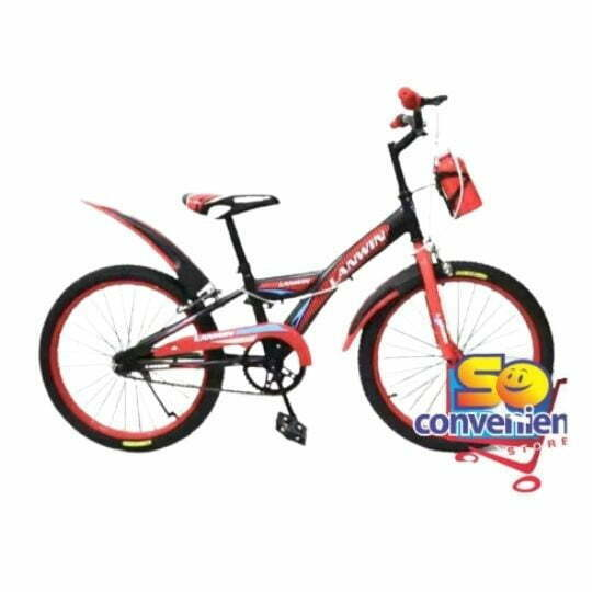 """20"""" Bicycle 2069 with 10G Big Colour Spoke and Water Bottles"""
