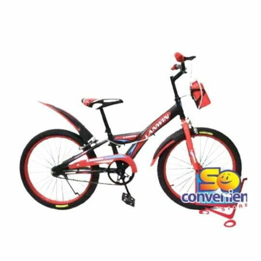 "20"" Bicycle 2069 with 10G Big Colour Spoke and Water Bottles"