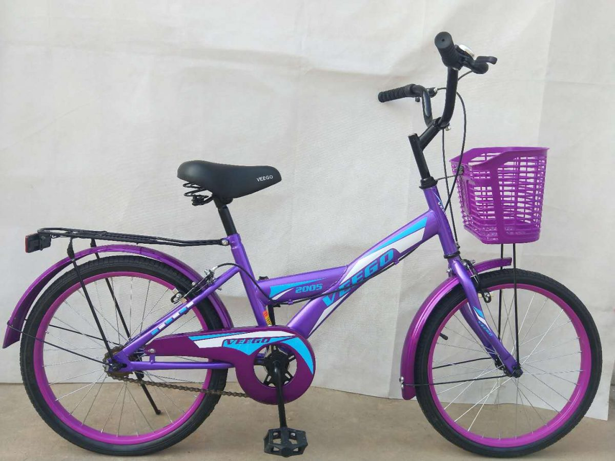 "20"" Veego Bicycle 2005 with Basket"